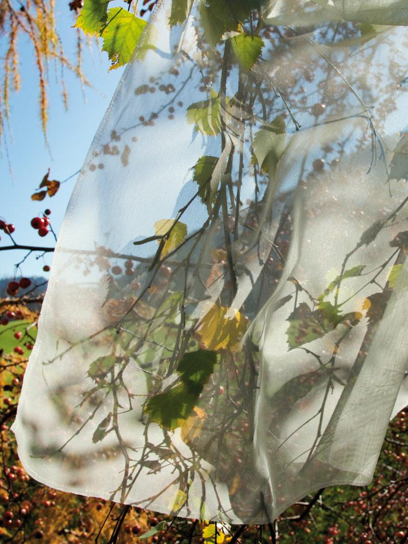 vorhang-transparent-raumausstatter-muenster-hegemann